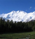 A view of Nanga Parbat (The Killer Mountain) from Fairy Meadows